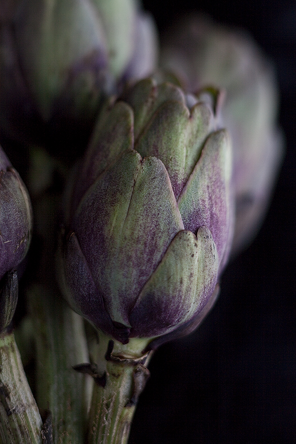 Artichokes • Paris, France