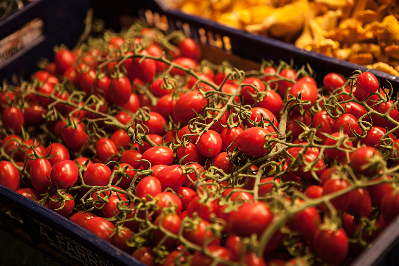 Tomatos • Mercado de La Boqueria • Barcelona, Spain