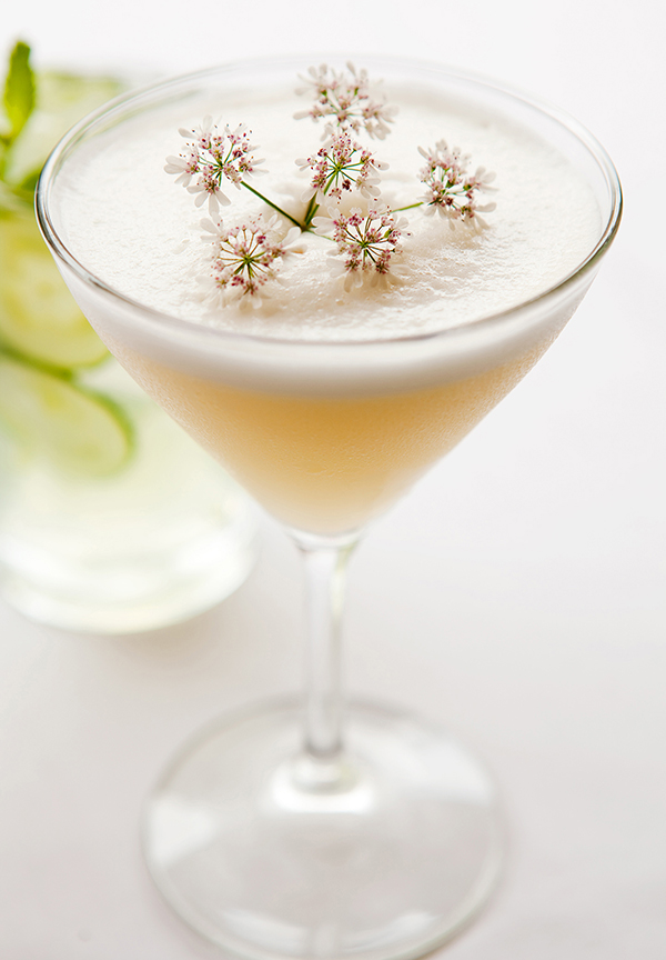 Ginger Gin Sour
