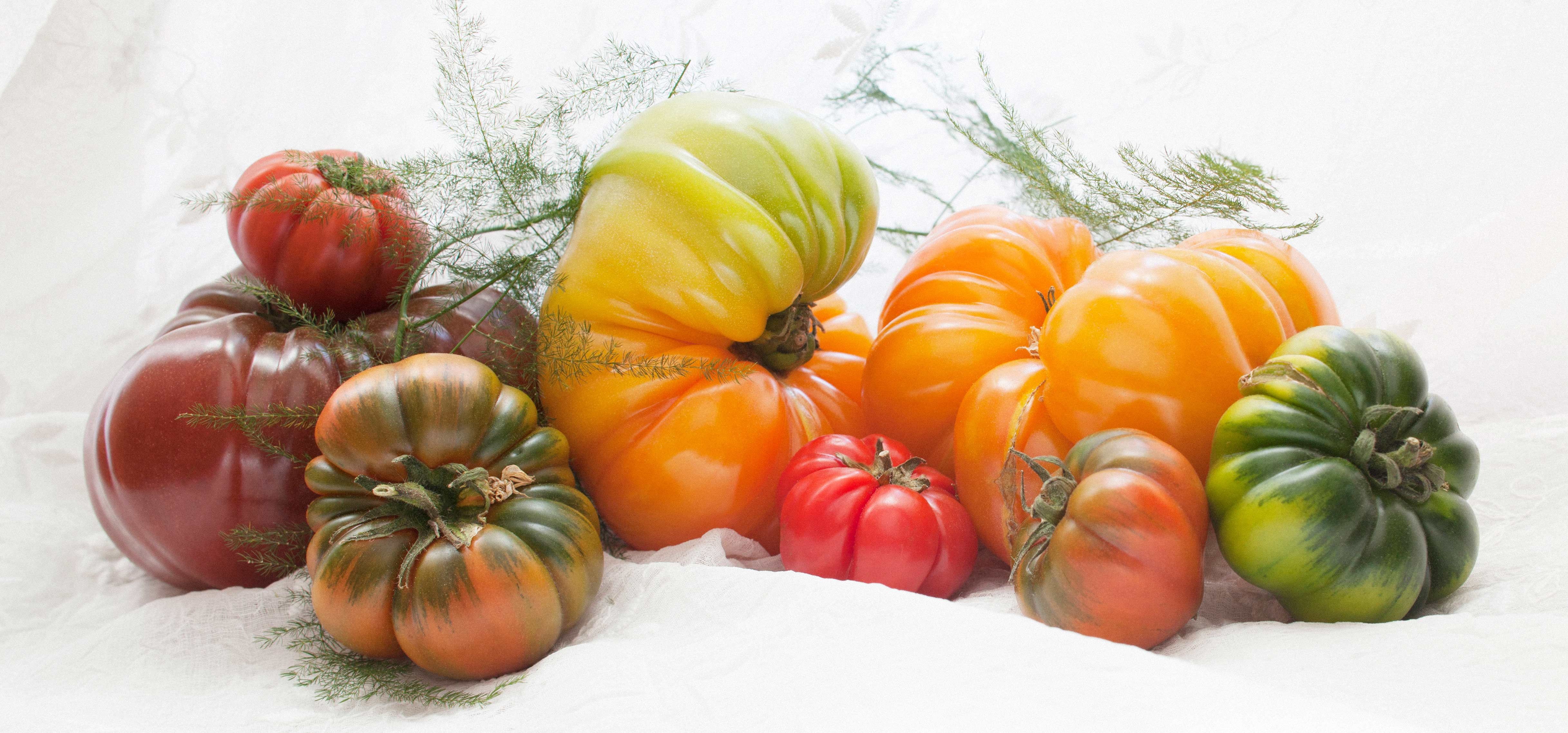 Heirloom Tomatoes, Nice France